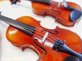 ヴァイオリン楽器